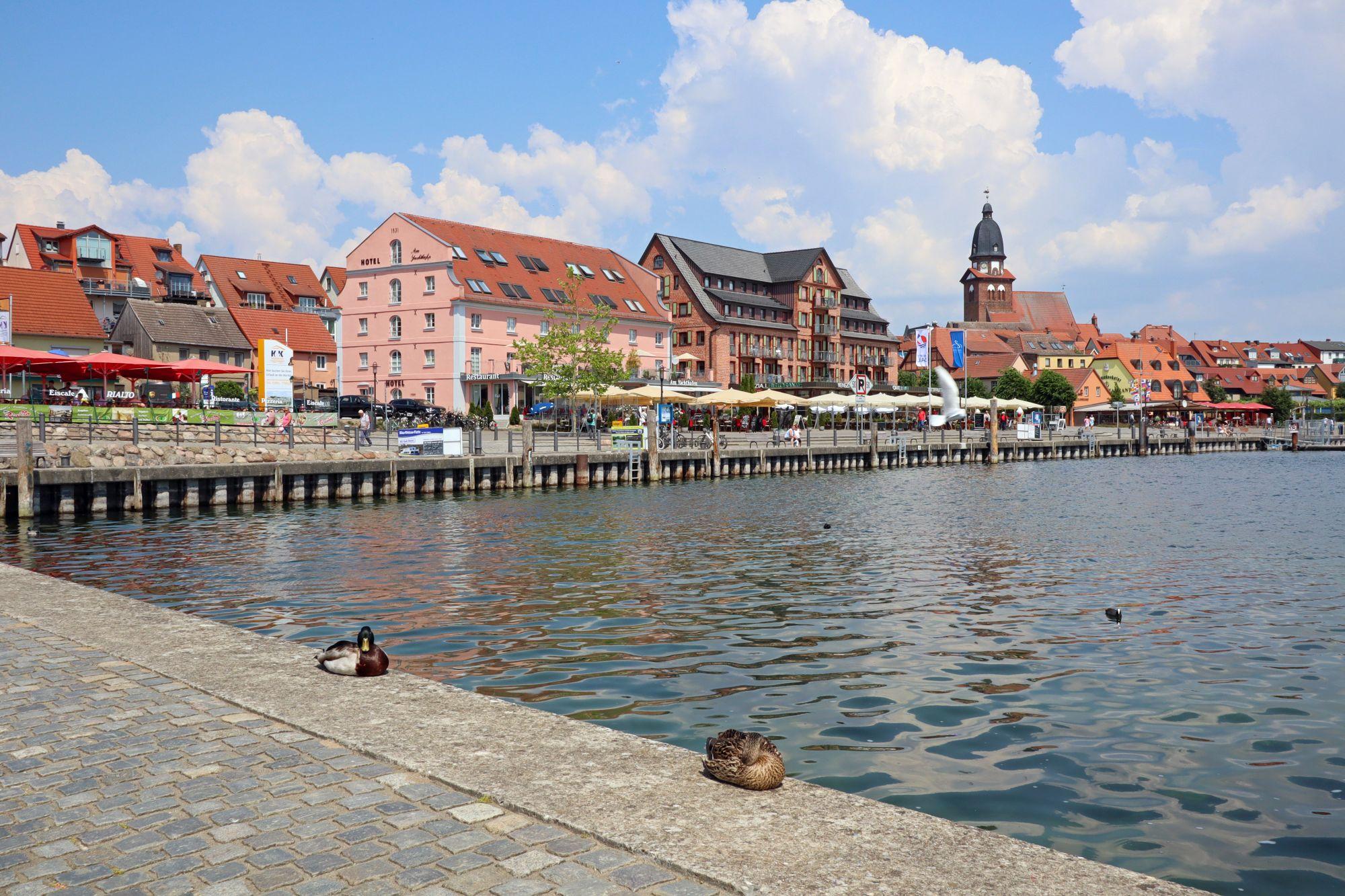 Neues entfachen in Mecklenburg-Vorpommern